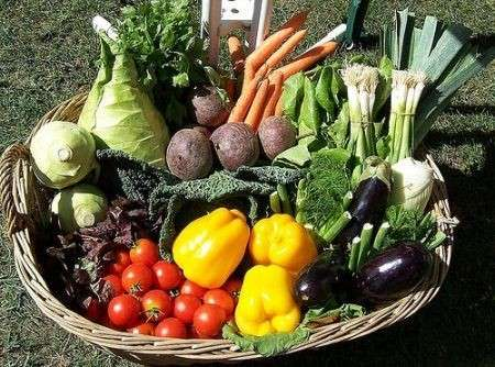 La dieta della verdura