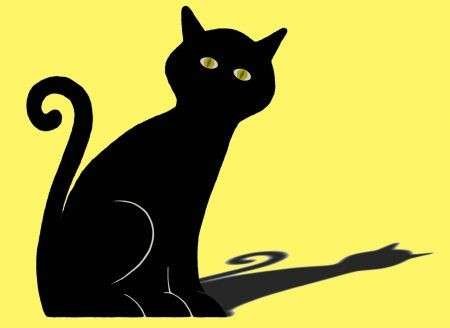 Halloween: in difesa dei gatti neri