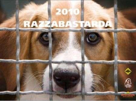"Calendario 2010 ""Razza Bastarda"" di Oliviero Toscani"