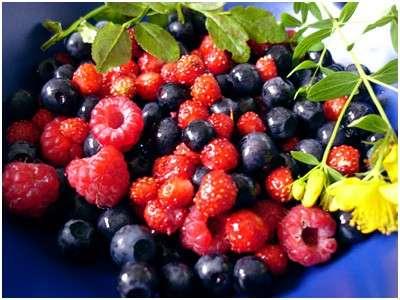 Frutti di bosco e bacche, alleati della salute