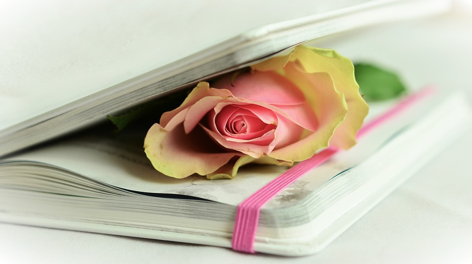 libro con poesie e con una rosa