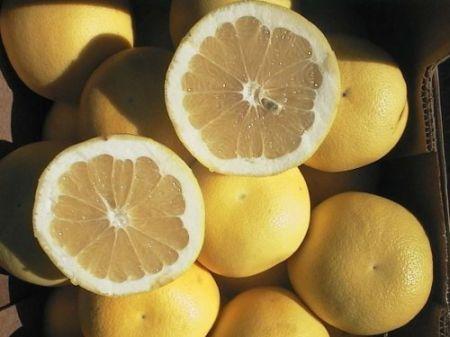 Pompelmo, una fonte di vitamine