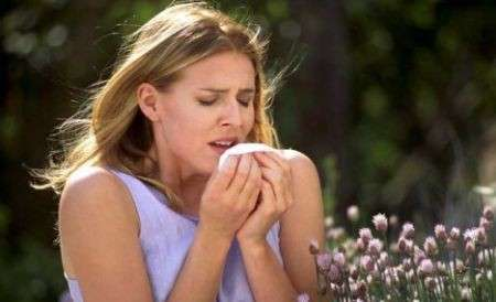 Allergia da pollini: il vero e il falso