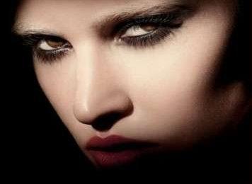 Make up: Giorgio Armani Bronze Collection