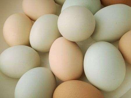 Cucina: conoscere le uova