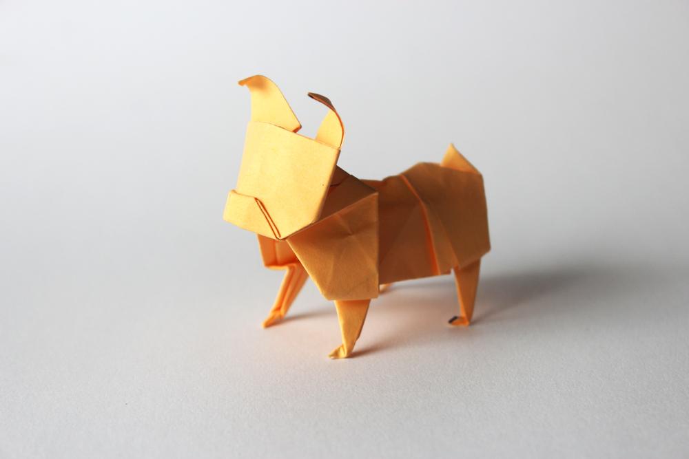 Origami: istruzioni per fare un cane