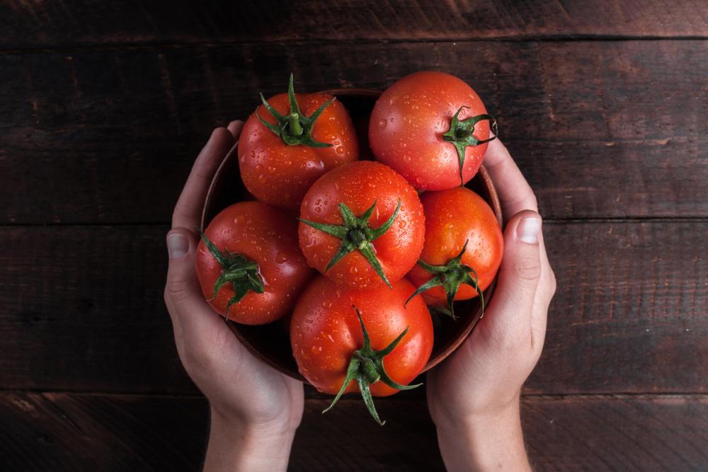 Giardinaggio: come coltivare i pomodori