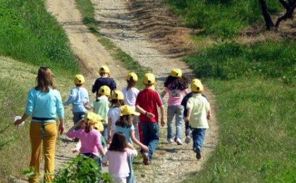 Estate 2010: nella fattorie con i bambini per giocare e imparare
