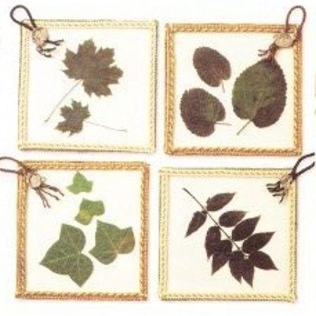 Dei simpatici quadretti decorativi con foglie pressate