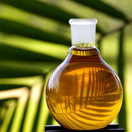 L'olio di palma e il cioccolato sono potenti antiossidanti