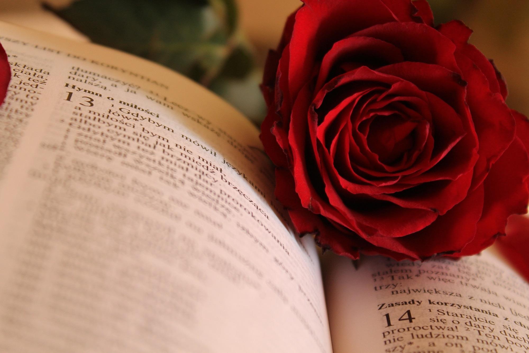 Poesie d'amore per conquistare, le più audaci e belle