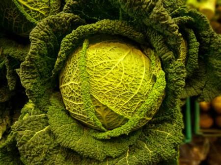 cavolo verdura foglia