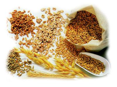 Pane integrale valori nutrizionali