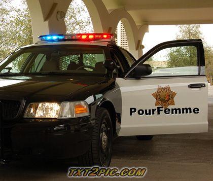 Portiera della polizia
