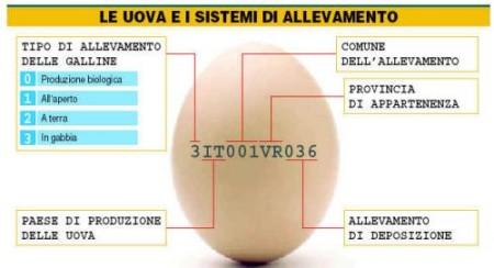 Caso diossina: cibi sani con etichette sicure