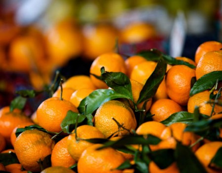 Frutta e verdura, meglio biologica o tradizionale?