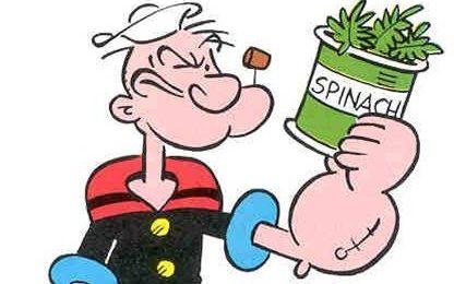 Dieta equilibrata, non devono mancare gli spinaci