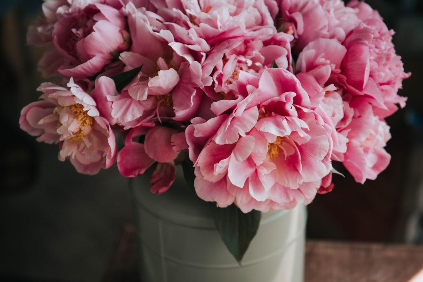 Filastrocche per bambini dedicate ai fiori