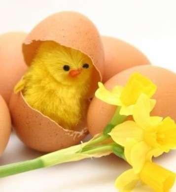 Fai da te per Pasqua: il cestino con gli ovetti di cioccolato