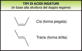 Grassi idrogenati idrogenazione
