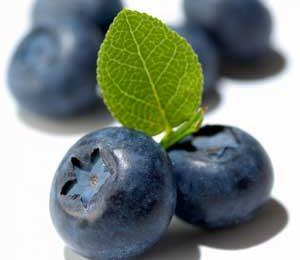 Antiossidanti, mirtilli selvatici più ricchi di quelli coltivati