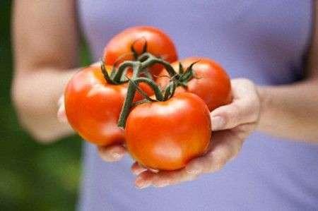 Dieta: tutte le proprietà benefiche del pomodoro