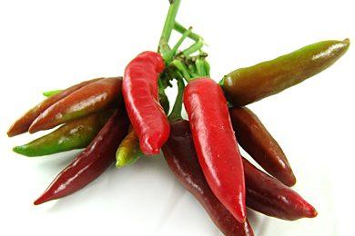 La dieta del peperoncino