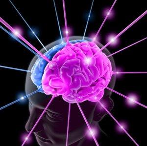 Cervello: mangiare di meno potenzia vista e memoria
