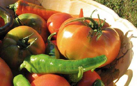 dieta bio mediterranea