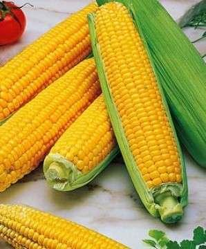Dieta del mais: pancia piatta e addio gonfiore