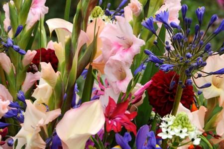 Come prolungare la fioritura di un fiore