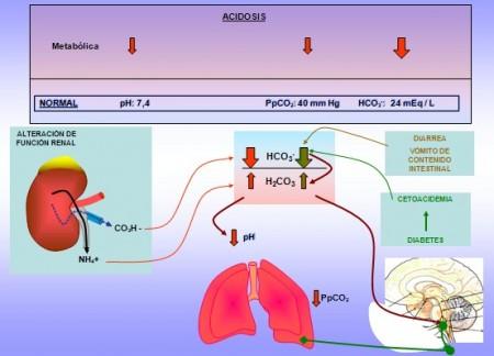 acidosi metabolica