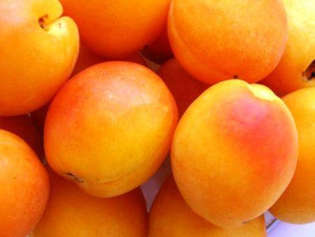 Perché la frutta di stagione è più buona?