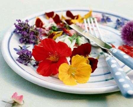 Quali sono i fiori commestibili più comuni