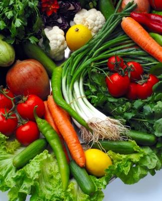 vegetali probiotici