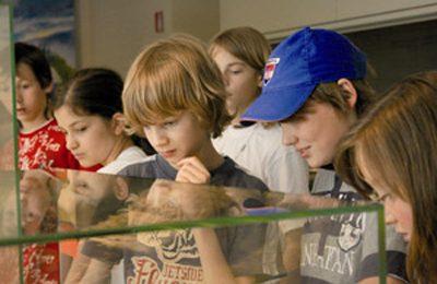 Musei per bambini: scegli quale visitare