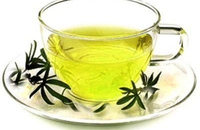 Colesterolo più basso con l'aiuto del tè verde