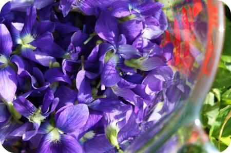 Ricette con i fiori: le sogliole alle violette