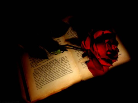 amore canto passione