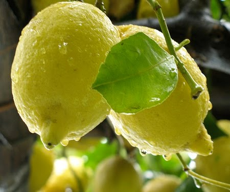 dieta del limone depurare