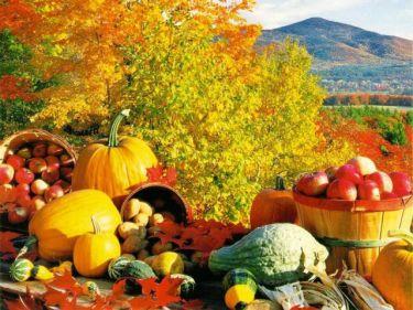 La dieta d'autunno per ritrovare la forma nella nuova stagione