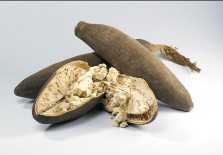 Il frutto del baobab è un potente antiossidante