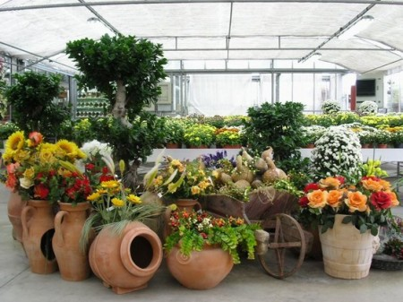 Lavoretti per bambini, vasi di fiori decorati da regalare ai nonni nel giorno della loro festa