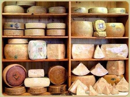 Autunno tempo di cibi golosi ma attenzione alle calorie dei formaggi!
