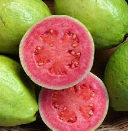 Il nuovo superfrutto antiossidante è la guava