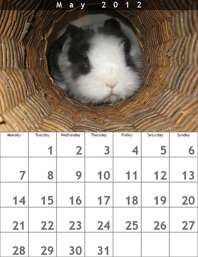 Calendari personalizzati con foto fai da te, per augurarvi un buon 2012