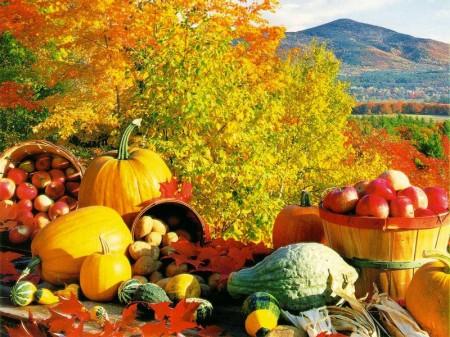 Come deve cambiare la nostra alimentazione in inverno?