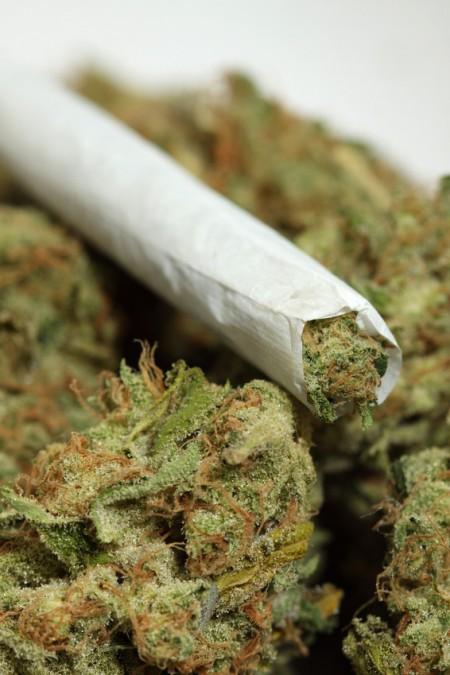 La marijuana manda il cervello in tilt