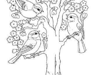 Lavoretti per bambini, disegni da colorare dedicati alla primavera