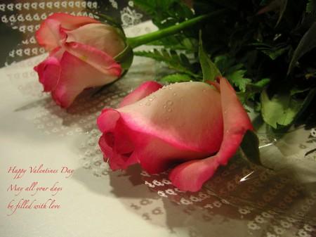 San Valentino 2012 cosa fare?